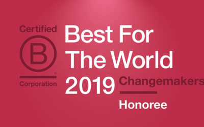 Pixel Parlor recognized as a B Corp 2019 Best for the World Changemaker